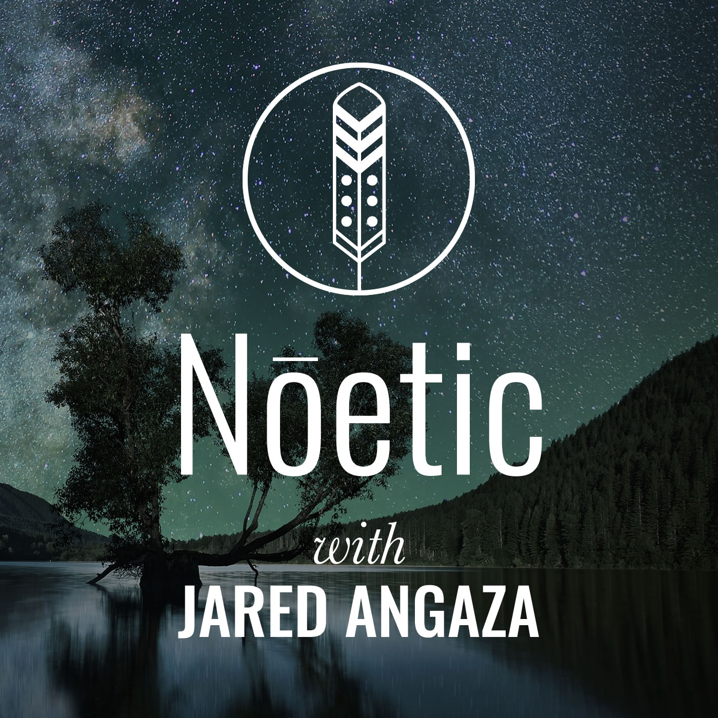 Noetic Podcast Artwork