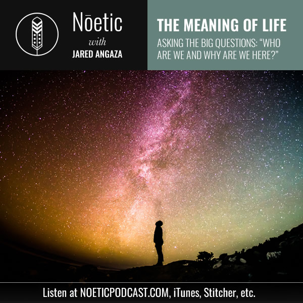 noetic_meaning_of_life_social