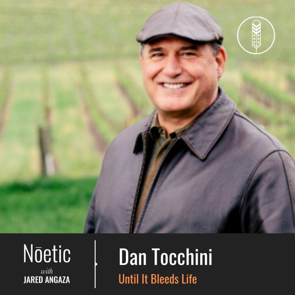 Dan Tocchini